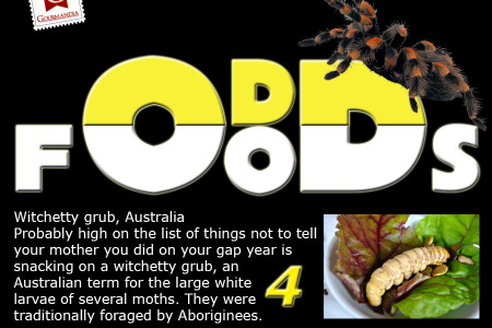 Odd Foods Infographic
