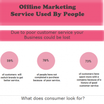 Offline marketing service used by people Infographic