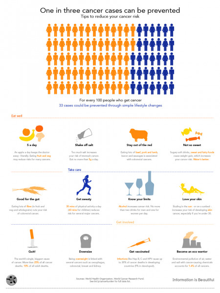 One in Three Cancer Cases Can be Prevented  Infographic