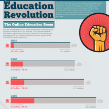 Online Higher Education Revolution Infographic