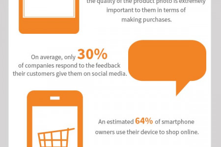 Online Shopping Facts Infographic