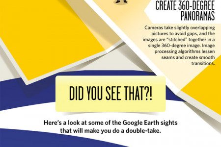 Our Weird Planet According to Google Infographic