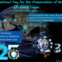 Ozone Day Infographic