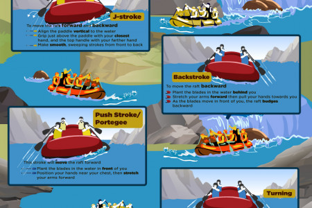 Paddling Strokes for Beginners [Infographic] Infographic