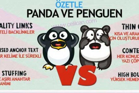 Panda vs Penguin Infographic