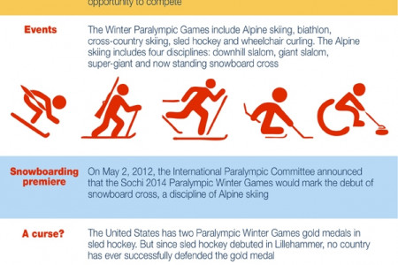 Paralympics Winter Games Infographic