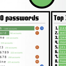 Password Security in 2012 Infographic
