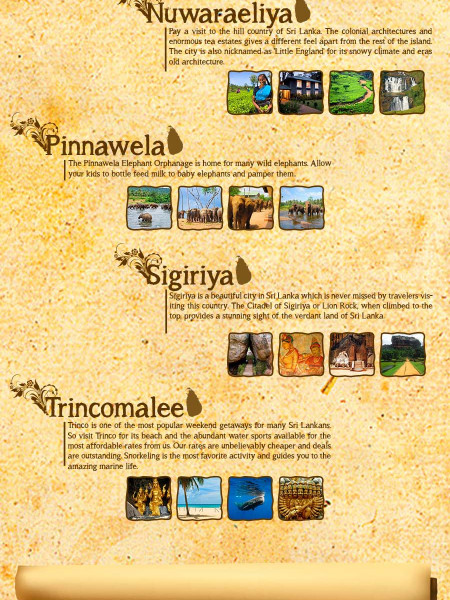 Pearl of the Indian Ocean Sri Lanka Travel Infographics Infographic