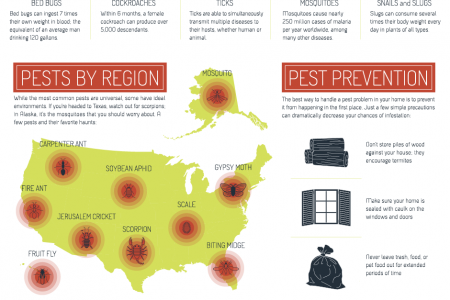 Pesky House Pests Infographic