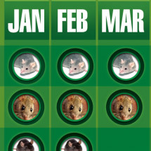 Pest activity chart  Infographic
