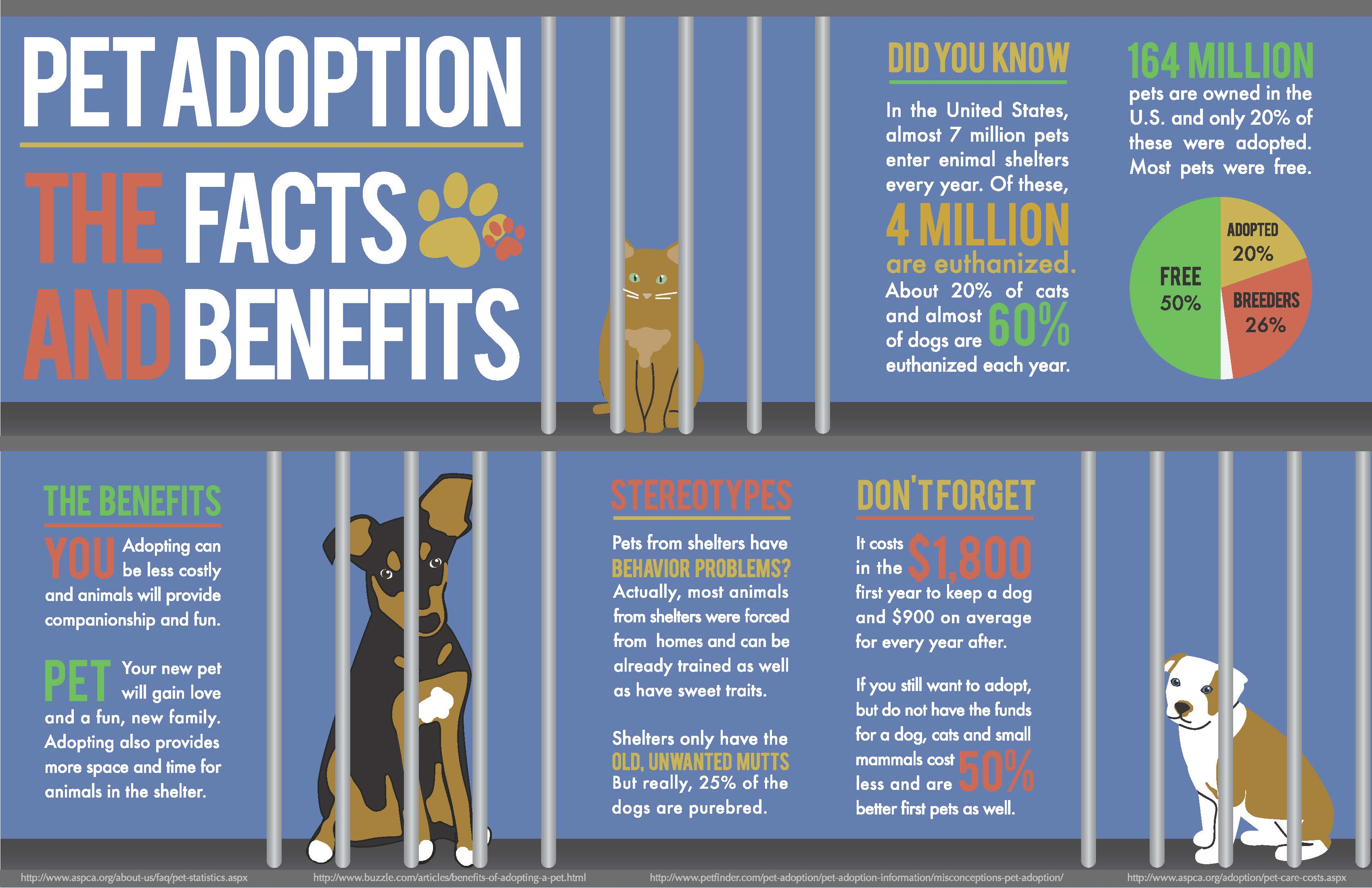 Cost Of Getting Your Dog Out Of The Pound