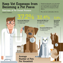 Pet Care Expenses Infographic