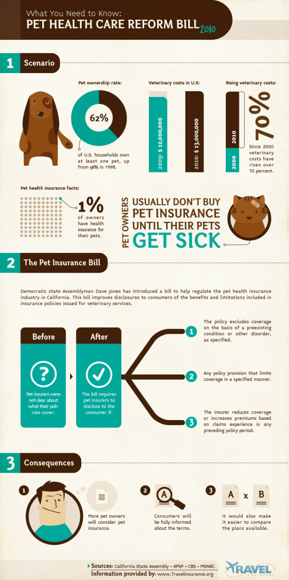 Pet Health Care Infographic