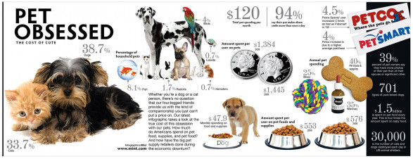 Pet Obsessed: The Cost of Cute