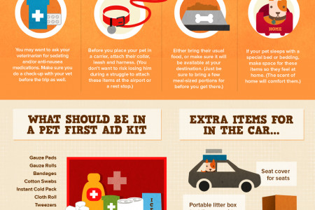 Pet Travel 101 Infographic