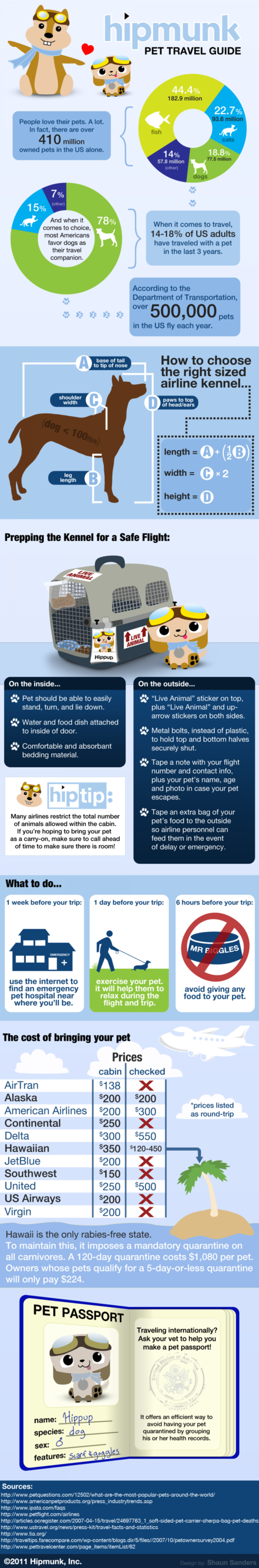 Pet Travel Guide Infographic