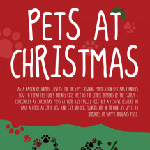 Pets at Christmas Infographic