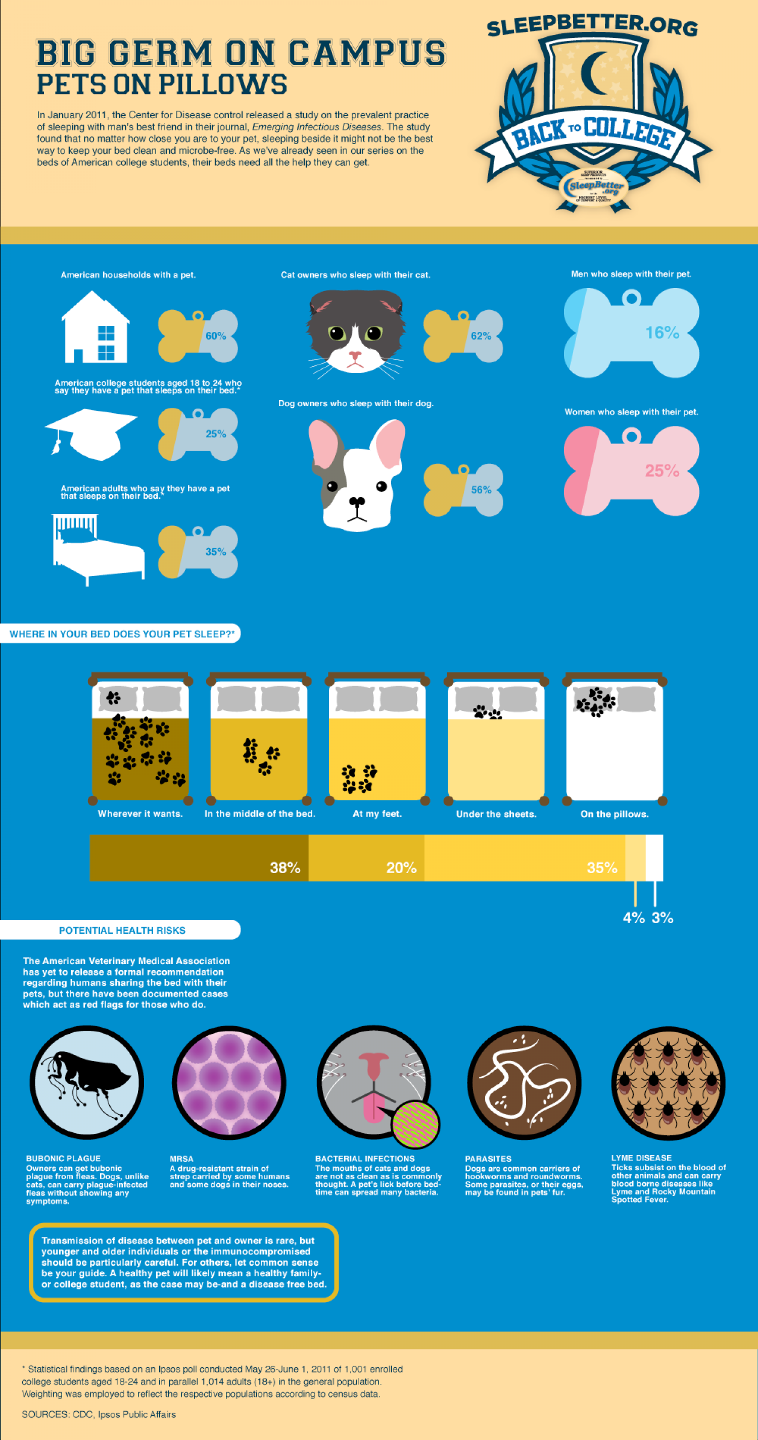 Pets On Pillows  Infographic