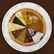 Pie Charts Infographic