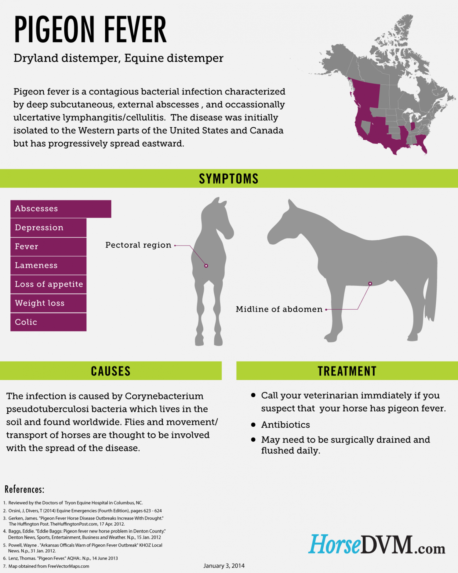 Pigeon Fever in Horses Infographic