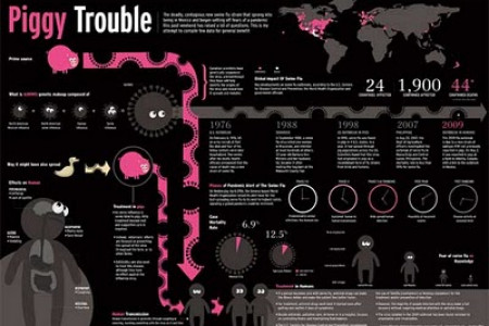 Piggy trouble Infographic