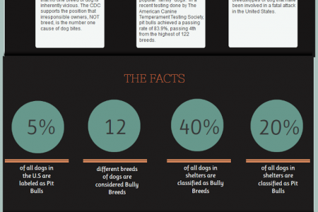 Pit Bull Awareness Month: Tops Myths About Pit Bulls Infographic