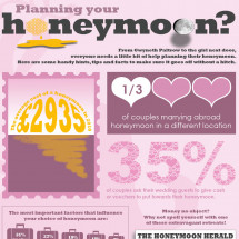 Planning Your Honeymoon Infographic