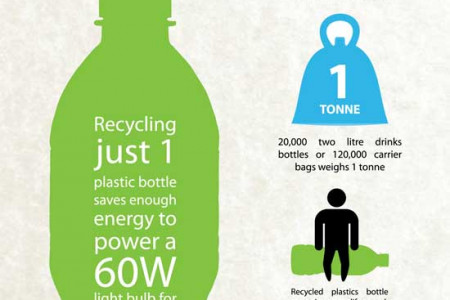 Plastic Recycling Facts Infographic