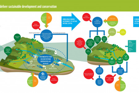 Policy Package for a Green Economy in the Heart of Borneo Infographic