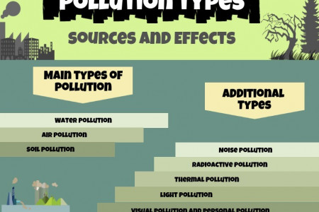 Pollution Types - Sources and Effects Infographic