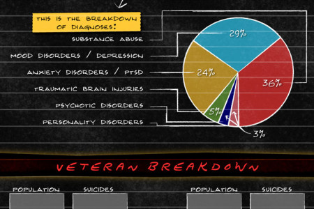 Possible Causes of The Military Suicide Epidemic Infographic