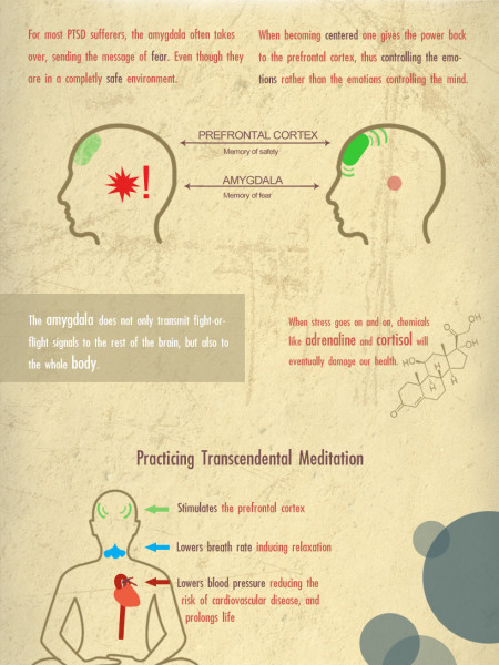 Post Traumatic Stress and How Transcendental Meditation Can Help Infographic