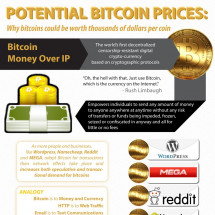 Potential Bitcoin Prices: Why Bitcoins Could Be Worth Thousands of Dollars Per Coin Infographic