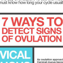 Predicting Ovulation Infographic