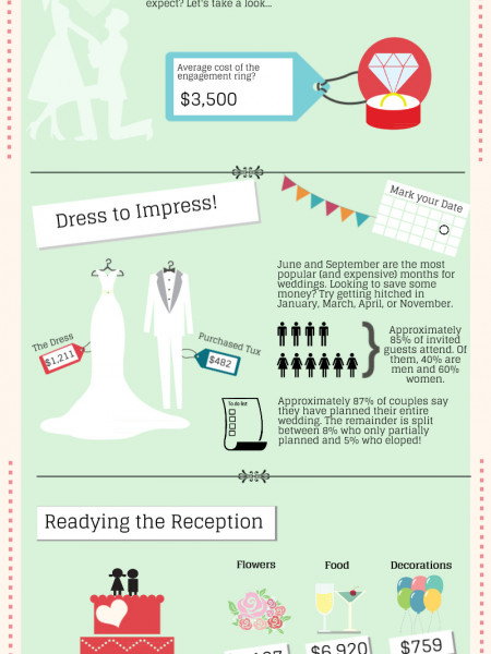 Wedding Facts: Preparing for the Big Day Infographic