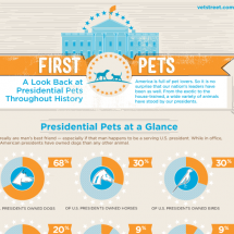 Presidential Pets: An Infographic History of Animals at the White House Infographic
