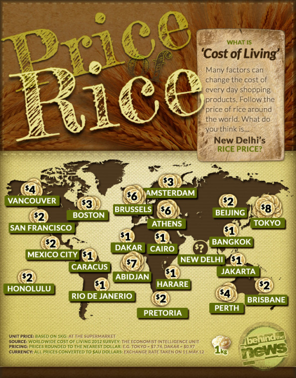 Price of Rice Infographic