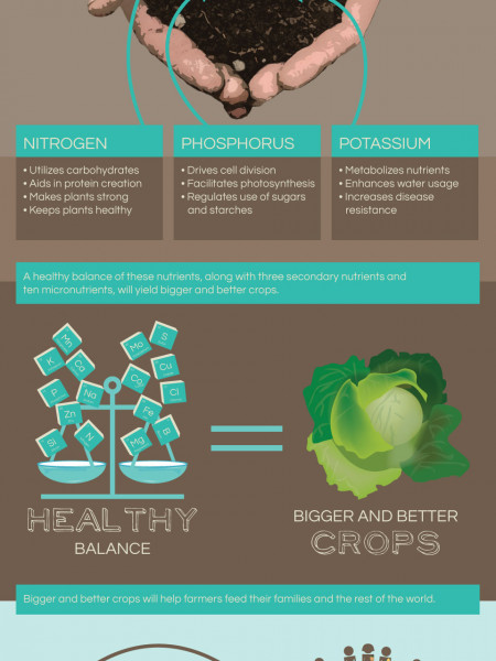 Primary Nutrients for Plant Growth Infographic