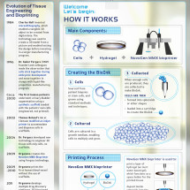 Printing the Human Body: How it Works and Where it's Headed Infographic