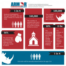 PRO Martial Arts Armor Program Infographic