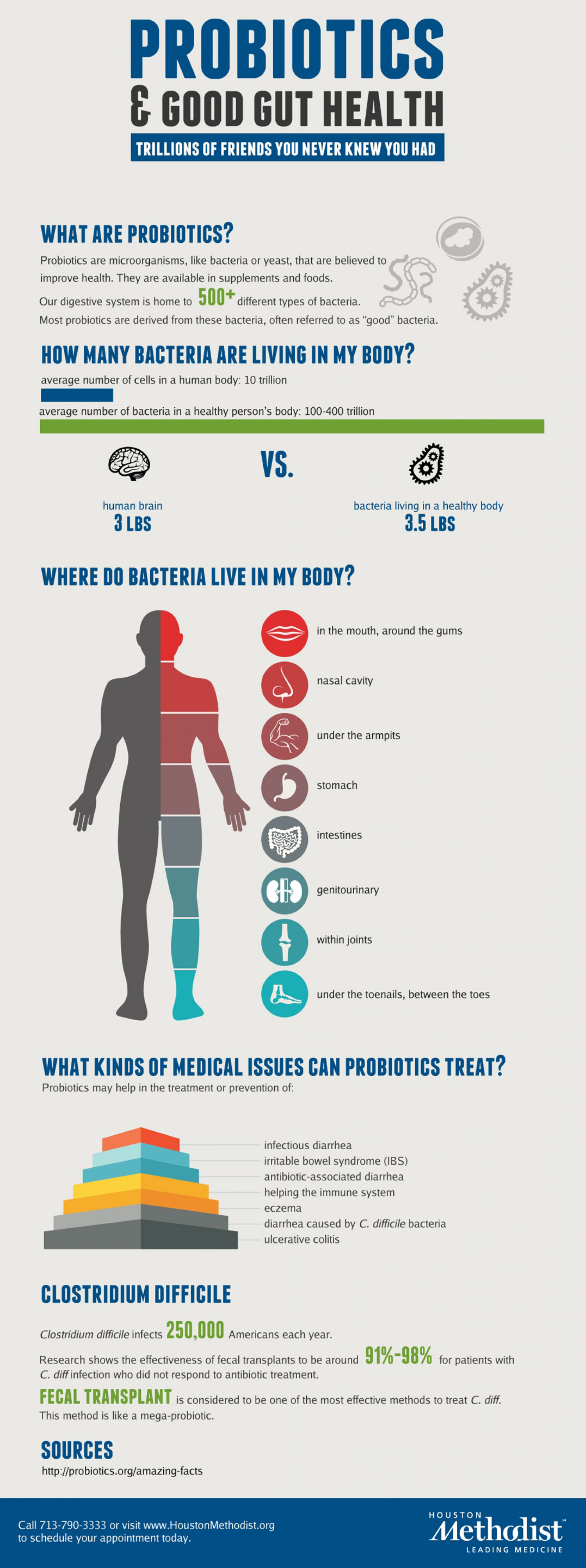 Probiotics & Good Gut Health Infographic