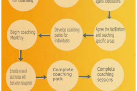 Process of Executive Coaching Infographic