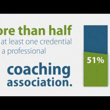 Professional Coaching at a Glance Infographic