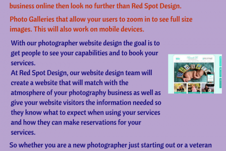 Professional Web Designing Services for Photographers Infographic