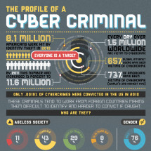 Profile of a Cyber Criminal Infographic