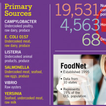 Progress in Reducing Foodborne Illness Infographic