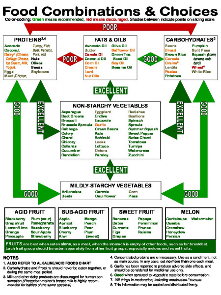 Food Combinations and Choices  Infographic