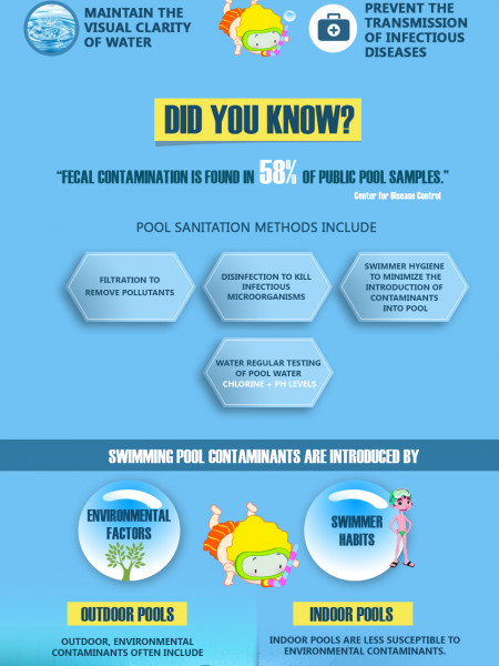 Proper Pool Maintenance In 8 Easy Steps! Infographic