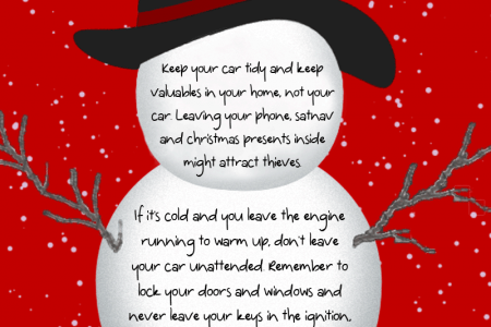 Protect your car this Christmas  Infographic