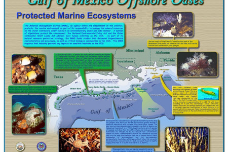 Protected Marine Ecosystems in Gulf of  Mexico Infographic